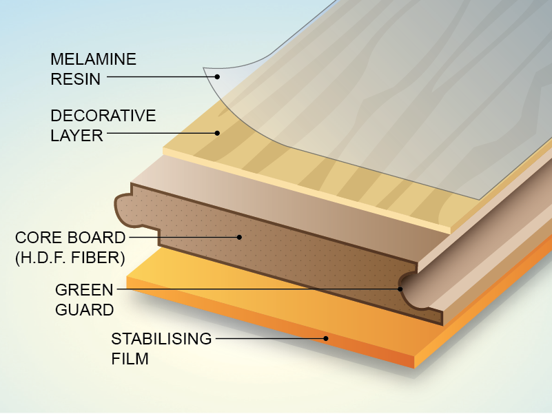 Below are the main components of Hoffen Laminate Floors, each layer ...